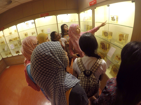 Our staff was explaining to the MSU students in the Pathology Museum